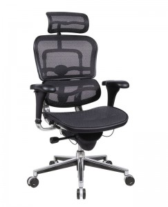 Ergohuman Mesh Chair with Adjustable Headrest