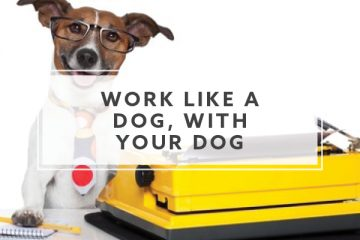 Work Like a Dog, With Your Dog