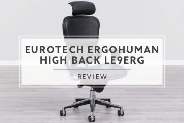 Eurotech Ergohuman High Back LE9ERG (2020 Review / Rating / Pricing)