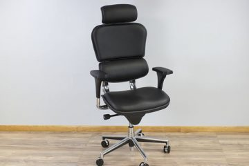 Eurotech Ergohuman High Back LE9ERG (Review / Rating / Pricing)