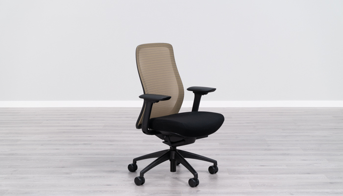 Eurotech Vera Best Flexible Mesh Back Office Chair