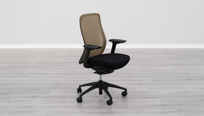 Eurotech Vera Ergonomic Chair Review