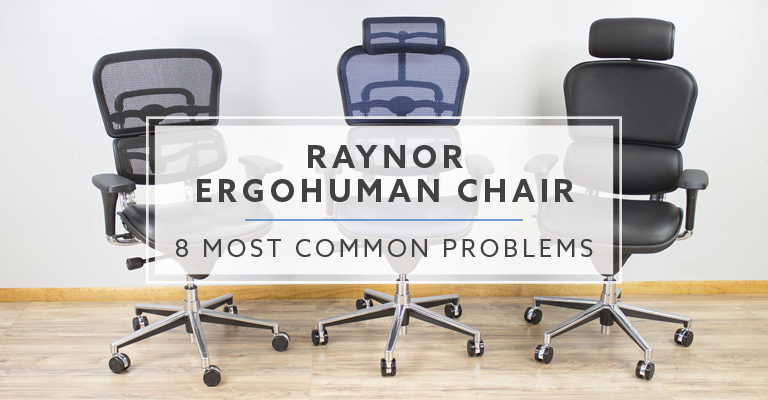 8 Problems With The Raynor Ergohuman Chair In 2019