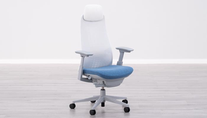 Haworth Fern Ergonomic Chair