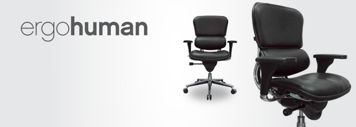 Ergohuman ergonomic office chair