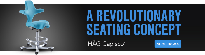 HAG Capisco - Ergonomic seating