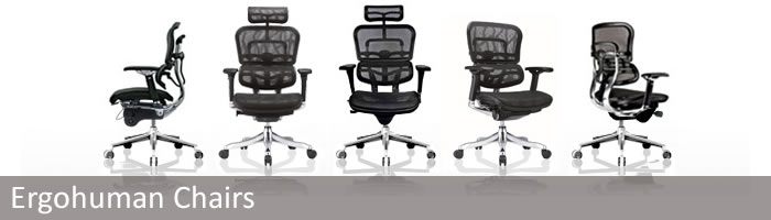 Ergohuman Chairs By Eurotech