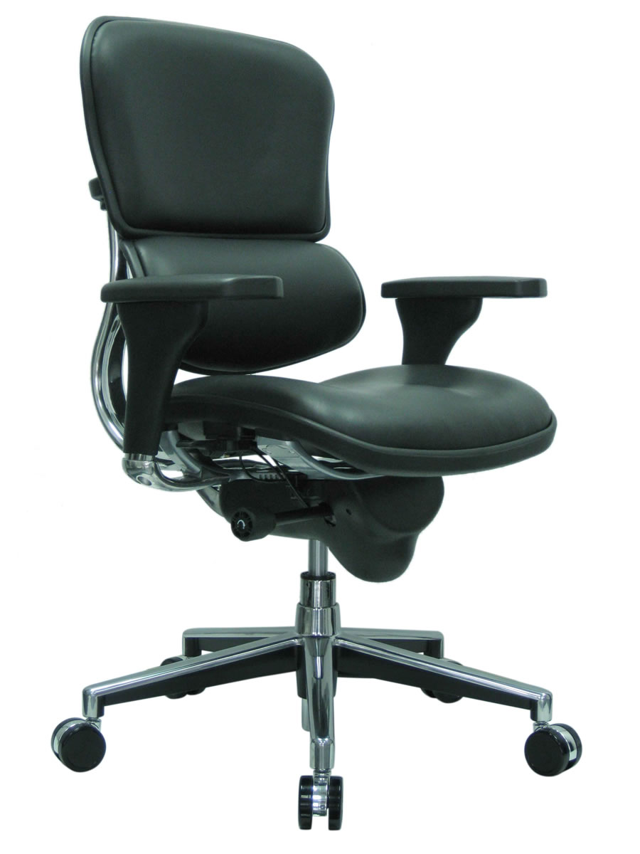 Raynor Ergohuman Mid Back Ergonomic Leather Chair