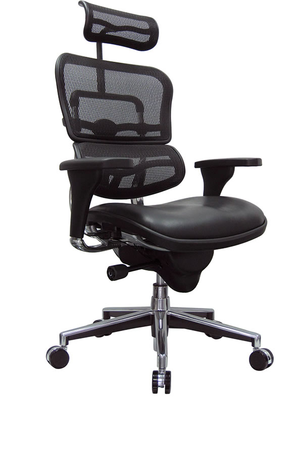 Raynor Ergohuman High Back Mesh Chair w/ Leather Seat