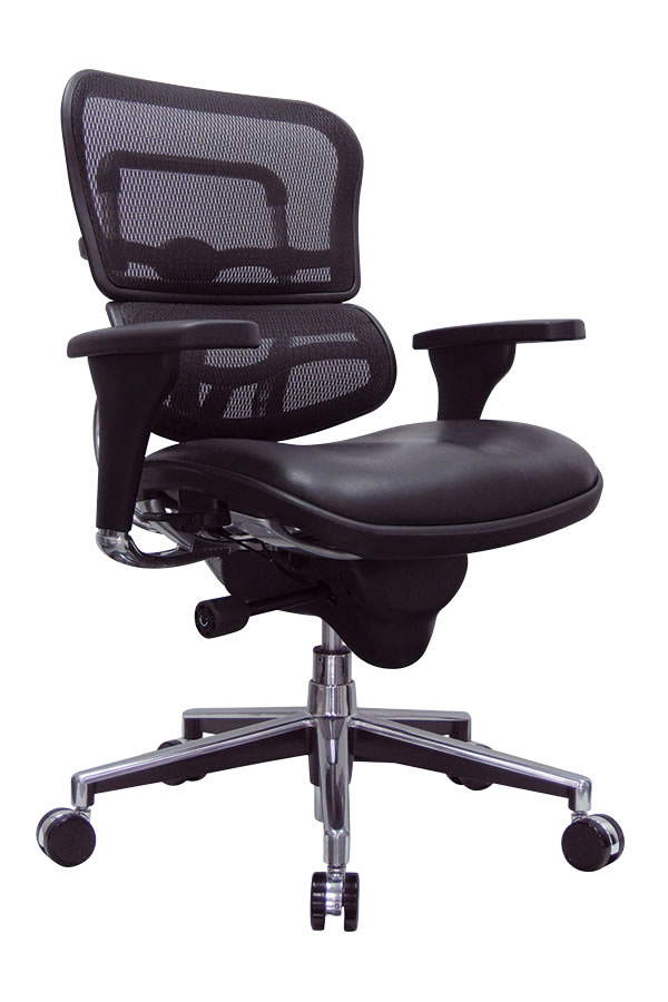 Raynor Ergohuman Mid Back Mesh Desk Chair w/ Leather Seat