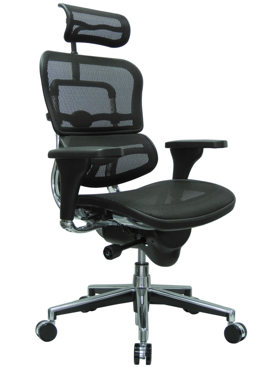 Raynor Ergohuman Mesh Office Chair With Adjule Headrest