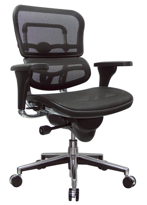 Raynor Ergohuman Mid Back Mesh Desk Chair