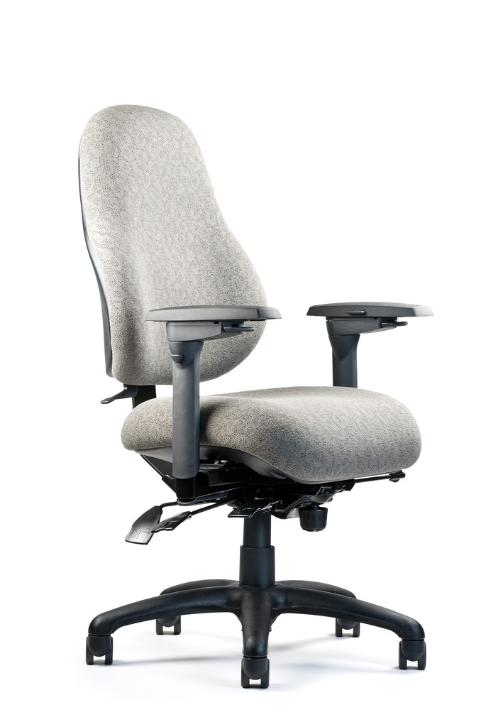 Neutral Posture 8000 Ergonomic Multi-Function Office Chair