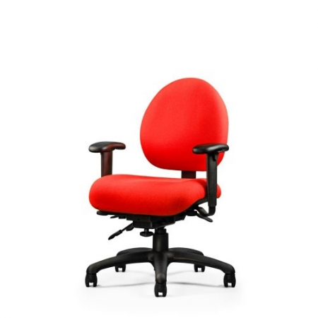 Neutral Posture E-Series Ergonomic Office Chair 40+ Upholstery Options (NP-ESX256)