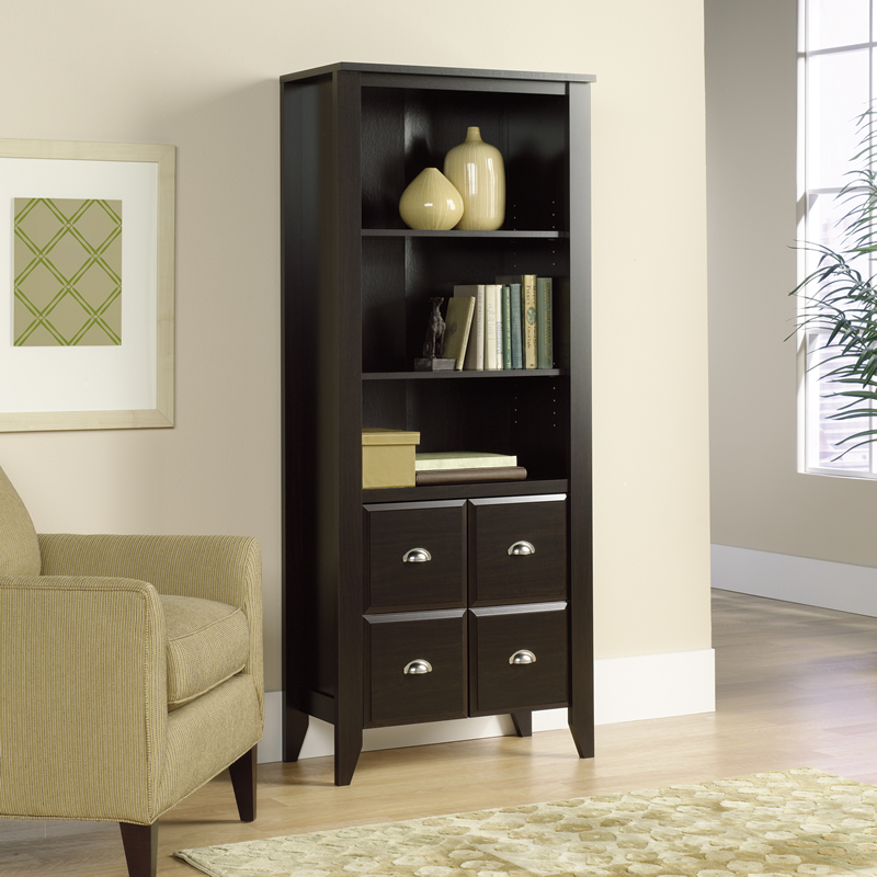 Sauder Shoal Creek Two Shelf Library With Bottom Doors