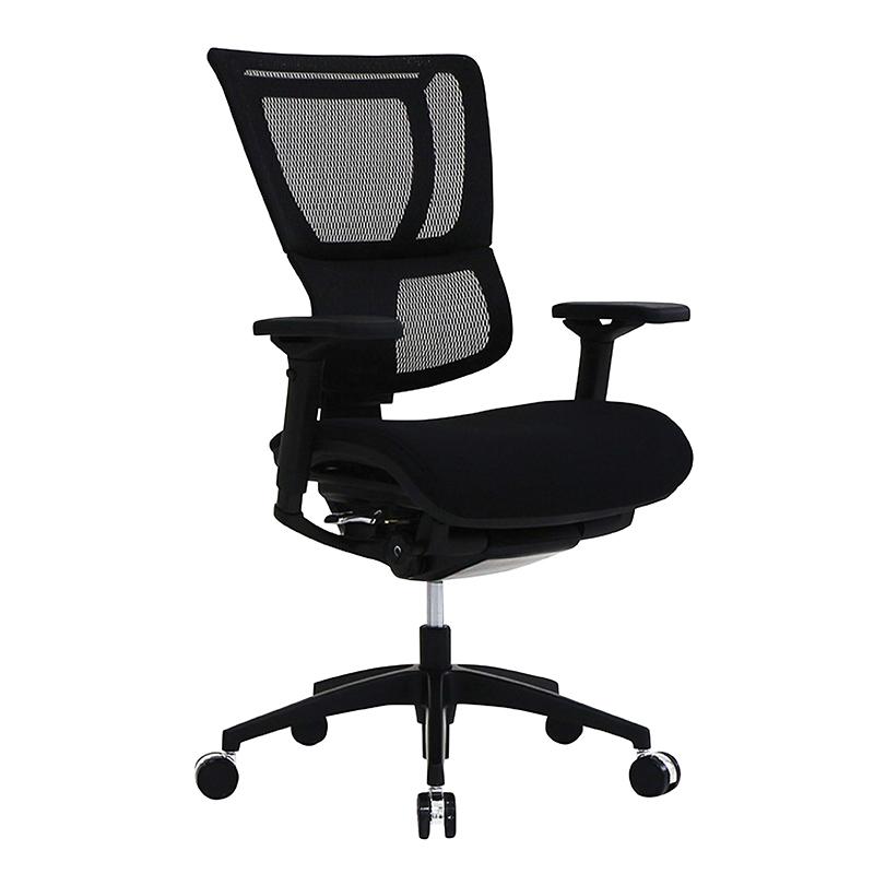 Raynor Eurotech Ioo Ergonomic Chair With Headrest