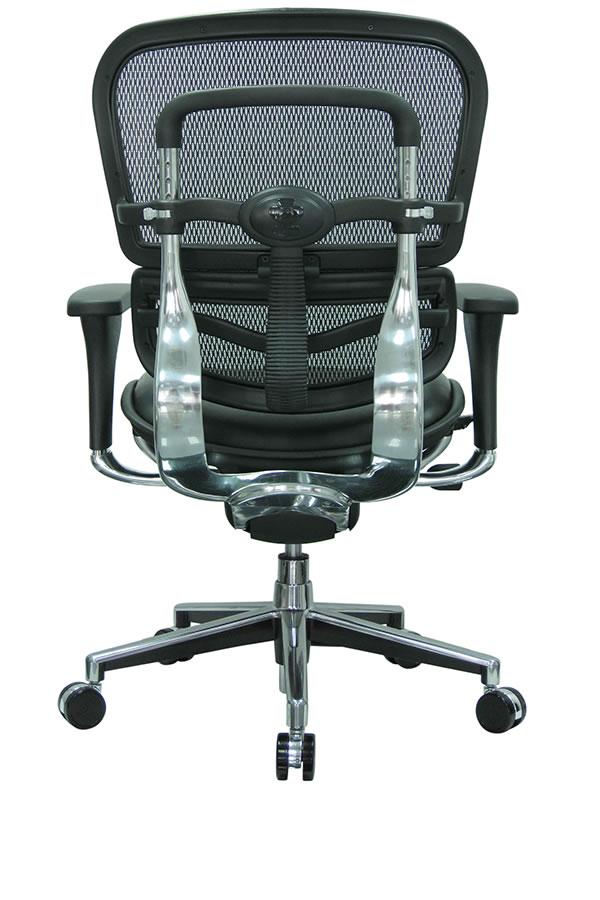 Terrific Eurotech Lem6Erglo Ergohuman Mesh Back Conference Chair Ibusinesslaw Wood Chair Design Ideas Ibusinesslaworg