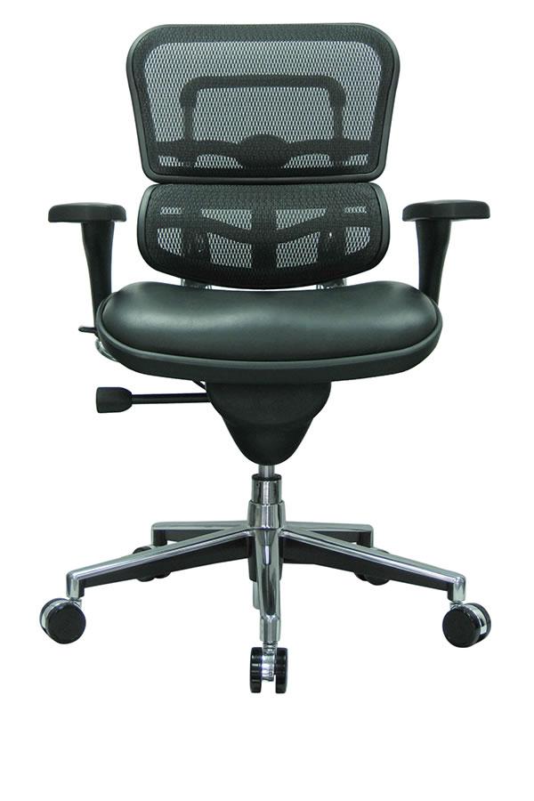 Remarkable Eurotech Lem6Erglo Ergohuman Mesh Back Conference Chair Ibusinesslaw Wood Chair Design Ideas Ibusinesslaworg