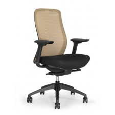 Eurotech Vera Mesh Back Ergonomic Chair