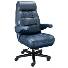 ERA Explorer Intensive Use Big Man's Chair 500 lbs Rating