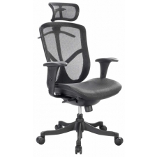 Raynor Fuzion Basic Mesh High Back Chair