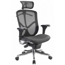 Raynor Fuzion Luxury High Back Mesh Chair