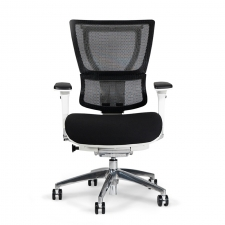 *New* Eurotech iOO Fabric/Mesh Ergonomic Chair