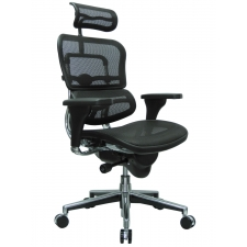 Raynor Ergohuman Mesh Office Chair with Adjustable Headrest