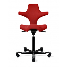 HAG Capisco 8106 Saddle Seat Ultrasound Chair with Back Support