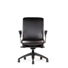 Neutral Posture Balance™ Executive High Back Chair