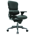 Raynor Ergohuman Mid Back Leather Chair (EUR-LE10ERGLO)