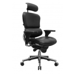 Raynor Ergohuman High Back Leather Office Chair