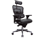 Raynor Ergohuman High Back Mesh Chair w/ Leather Seat (EUR-LEM4ERG)