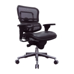 Raynor Ergohuman Mesh Mid Back Chair w/ Leather Seat (EUR-LEM6ERGLO)