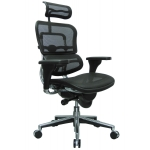 Raynor Ergohuman High-Back Mesh Chair with Adjustable Headrest (EUR-ME7ERG)