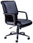 Mayline Mercado Leather Series Alliance Computer Chair w/ Center Tilt Control (MAY-AL)